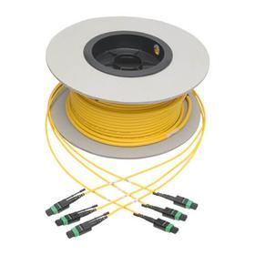 MTP/MPO (APC) Singlemode Slim Trunk Cable, 24-Strand, 40/100 GbE, 40/100GBASE-PLR4, Plenum, 6mm Dual Jacket, 61 m (200 ft.)