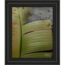 """""""Butterfly Palm Il"""" By Patricia Pinto Framed Print Wall Art"""