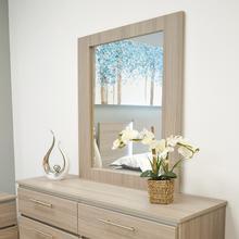 Mirror  Nf 310