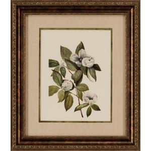 Delicate Foliage II