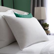 Standard Hotel Symmetry® Pillow Standard