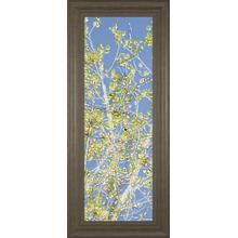 """Spring Poplars Il"" By Sharon Chandler Framed Print Wall Art"
