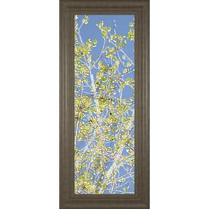 "Classy Art - ""Spring Poplars Il"" By Sharon Chandler Framed Print Wall Art"