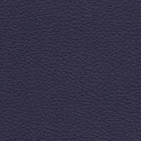 Symphony Indigo Product Image