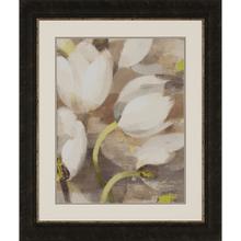 Product Image - Tulip Delight II