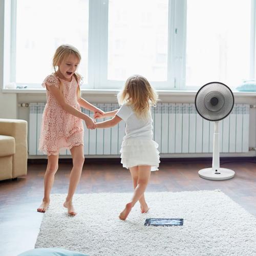 Slightly Blemished pureFlow CIRCULATOR Multi-Directional Oscillating Fan