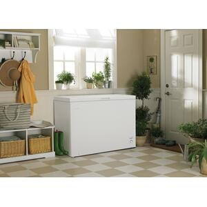 Diplomat 9.0 cu.ft. Chest Freezer