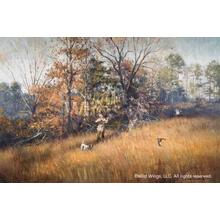 """View Product - Hillside Double-Quail Hunting - Limited Edition Print 17""""H x 25.5""""W"""