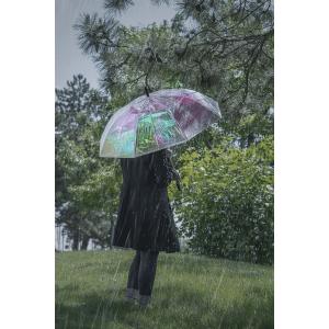 Irridescent Rainbow Umbrella