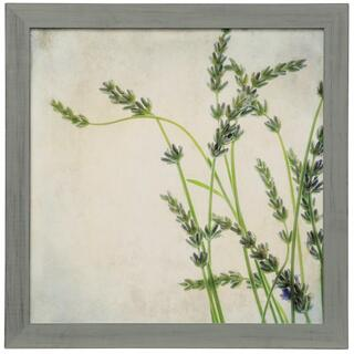 Lavender II  Made in USA  Artist Print Framed Under Glass  Attached Hanging Hardware