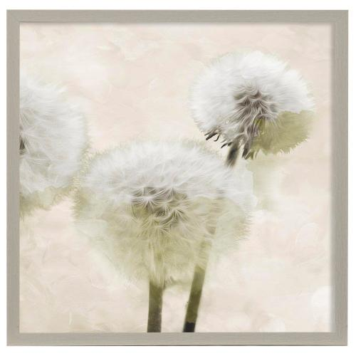 Style Craft - Make Another Wish Cream  32in X 32in Promotional Framed Print Under Glass  Ready to Hang