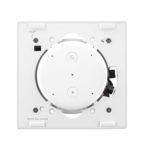 KVA-40 Amazon Echo Input Amp