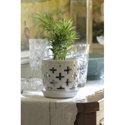 """Alpine 6"""" Orchid Pot w/Att. Scr ASSRT WH 6 mix/ctn"""