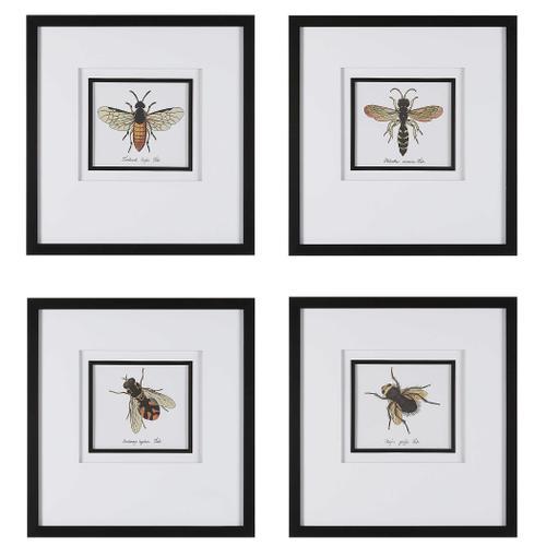 Anthophila Framed Prints, S/4