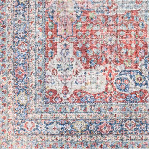 "Product Image - Alanya ALY-2301 2'7"" x 7'3"""