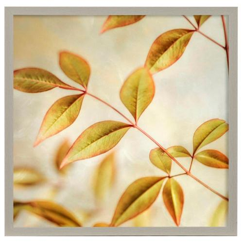 Style Craft - Golden Leaves II  Made in USA  Artist Print  Faux Wood Frame Under Glass  Attached Hanging Hardw