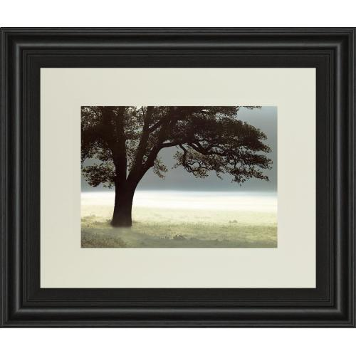 """Enlighten Me"" By Assaf Frank Framed Print Wall Art"