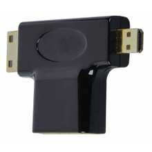 2-in-1 Mini + Micro Adapter Compatible with HDMI