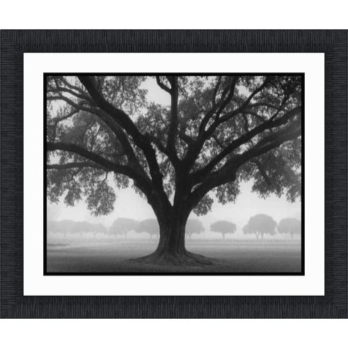 The Ashton Company - Silhouette Oak