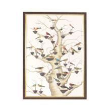 See Details - The Aviary