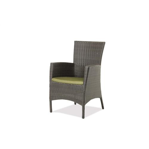 Palm Harbor Dining Arm Chair