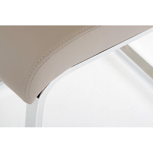 Crane - Modern Grey Dining Chair (Set of 2)