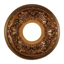 See Details - Acanthus Medallion 11 Inch in Antique Bronze Finish