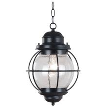 See Details - Hatteras - 1 Light Hanging Lantern