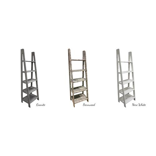 Gallery - Ladder Bookcase