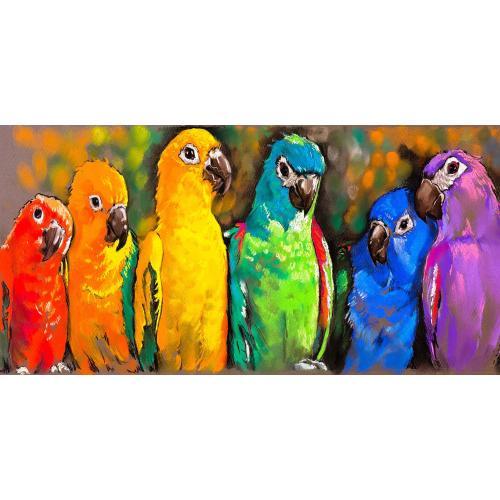 Pretty Parrots 48 x 24