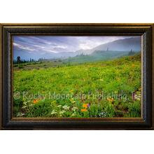 1-ONLY Giclee Print, Nature's Gift