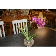 See Details - Purple Orchids