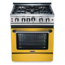 "Precision 30"" Gas Self Clean Range(Custom RAL Color)"