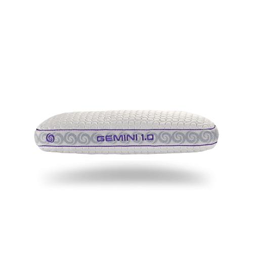 Gemini 1.0 position pillow