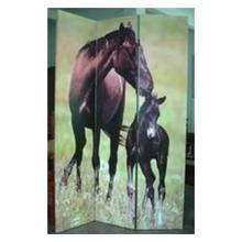 Thoroughbred  3 Panel Room Divider