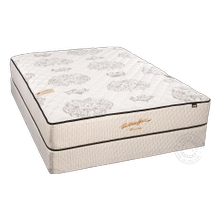 Seabreeze Luxury Euro Pillow Top - Gel memory foam and Pocked Coils!