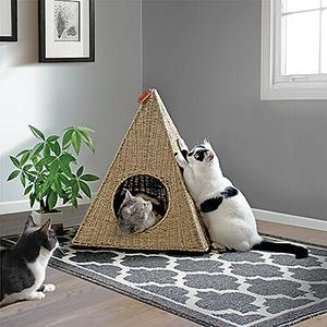 Pyramid Cat Nest