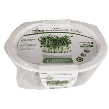 PLANTBEST Radish Microgreens Aqua Grow Kit