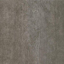 Alterna D7197 Enchanted Forest Engineered Tile - Night Owl 12 in. Wide x 24 in. Long, Low Gloss