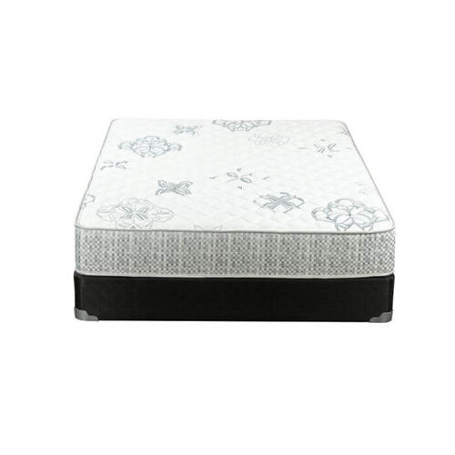 "Elated Firm 11.5"" Mattress"