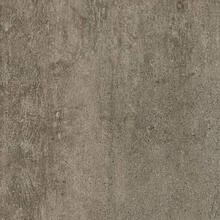 Alterna D5198 Enchanted Forest Engineered Tile - Tender Twig 8 in. Wide x 16 in. Long, Low Gloss