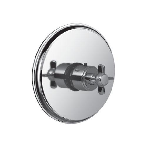 "3/4"" Thermostatic Control in Standard Pewter"