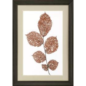 Rust Pressed Leaves I