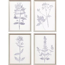 Navy Botanicals S/4