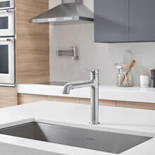 View Product - Studio S Pull-Out Kitchen Faucet  American Standard - Stainless Steel