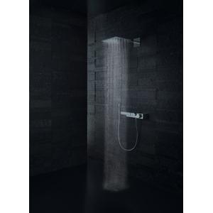 Brushed Nickel Shower holder