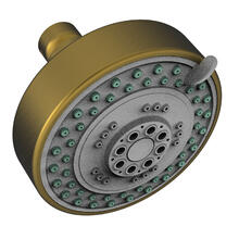 Antique Brass Multifunction Showerhead