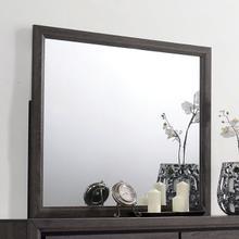 Mirror Conwy