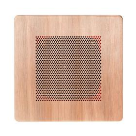 Self Powered Bluetooth Speakers in Antique Copper