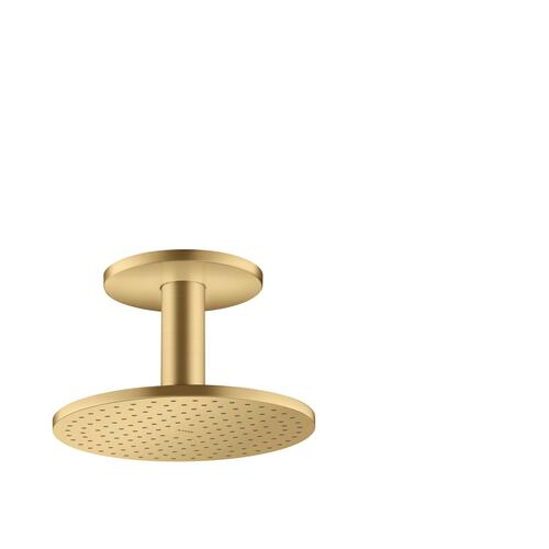 Brushed Gold Optic Overhead shower 250 1jet with ceiling connection